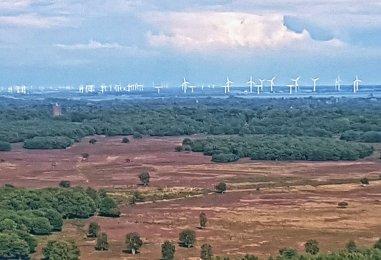 Bussumerheide en de windmolens in het Gooimeer