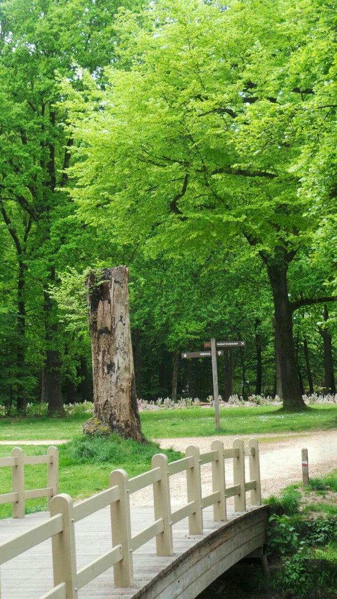Park bij Kasteel Groeneveld in Baarn