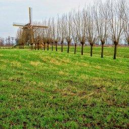 Loenderveense molen
