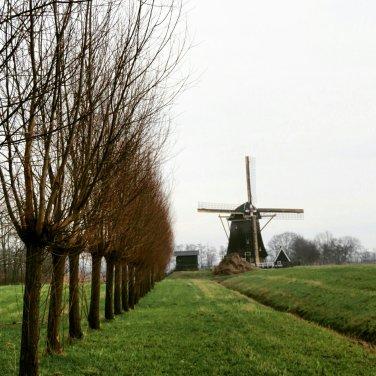 Bij Loenen aan de Vecht