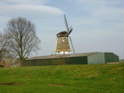Molen De Kraai in Westbroek